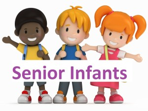 senior infants