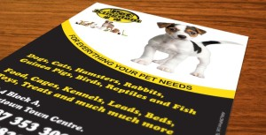 pet_kingdom_flyer_1013