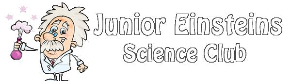 logo-einstein1