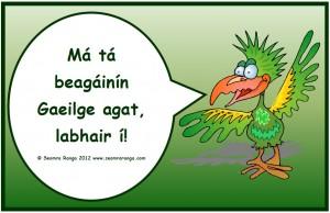 beagainin_gaeilge-300x194