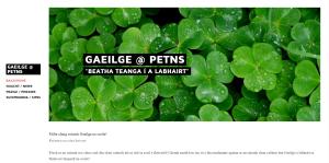 Gaeilge website